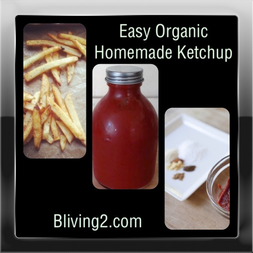 Easy Organic Homemade Ketchup