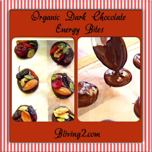 organic dark chocolate energy bites