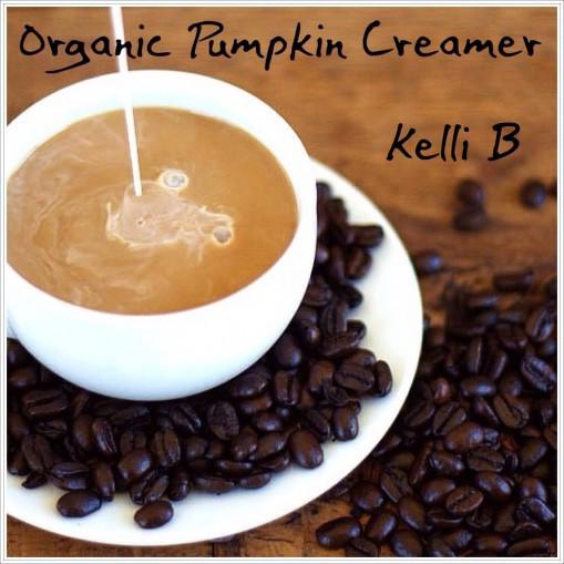 Organic Pumpkin Creamer pic