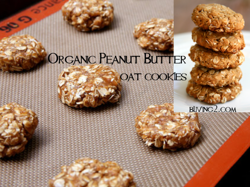 Organic Peanut Butter Oat Cookies Picture